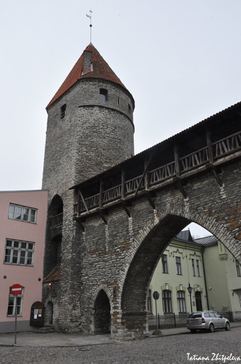 башни...ворота
