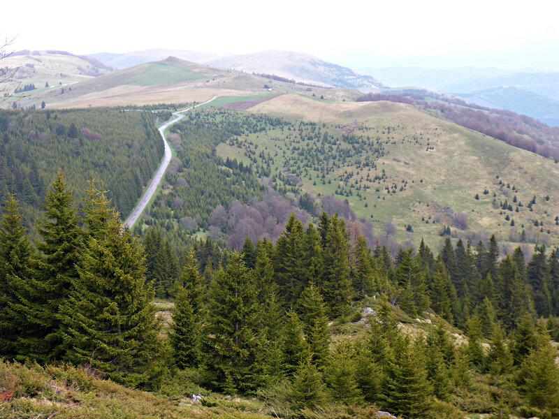 красивый пейзаж в горах в копаонике