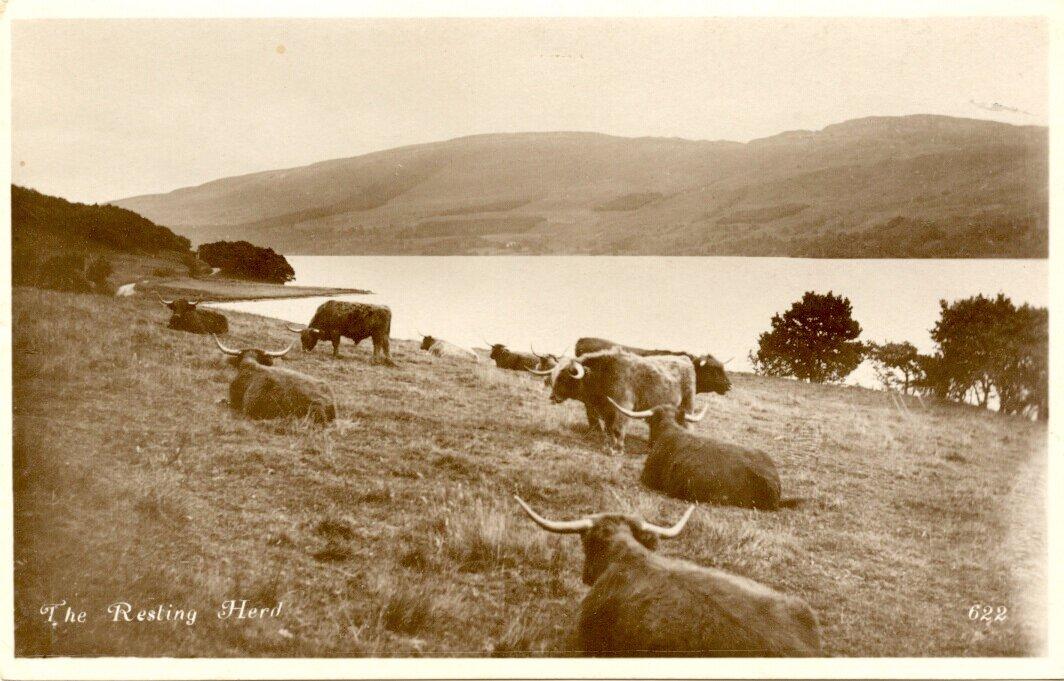 Неустановленная местность. 1930