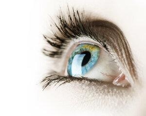 Открытие учёных — в строении глаза найден новый слой