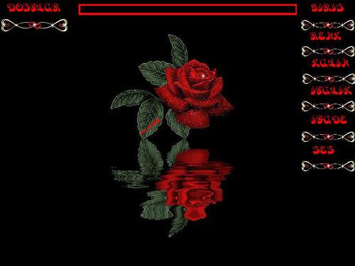 Роза отражается в воде. Черный фон открытки фото рисунки картинки поздравления