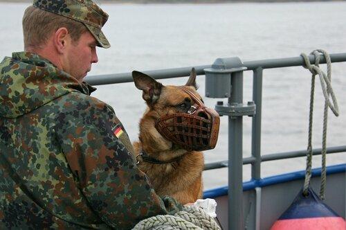 Oberfeldwebel mit seinem Diensthund
