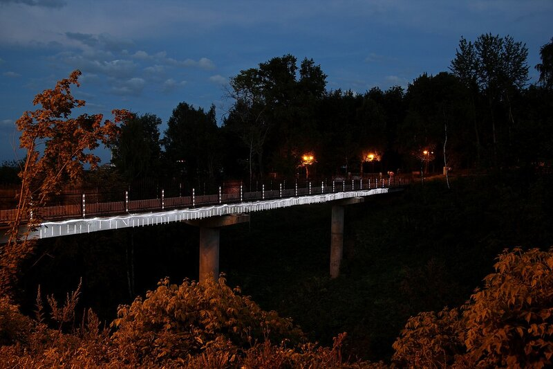 Мост самоубийц в Александровском саду в ночной иллюминации