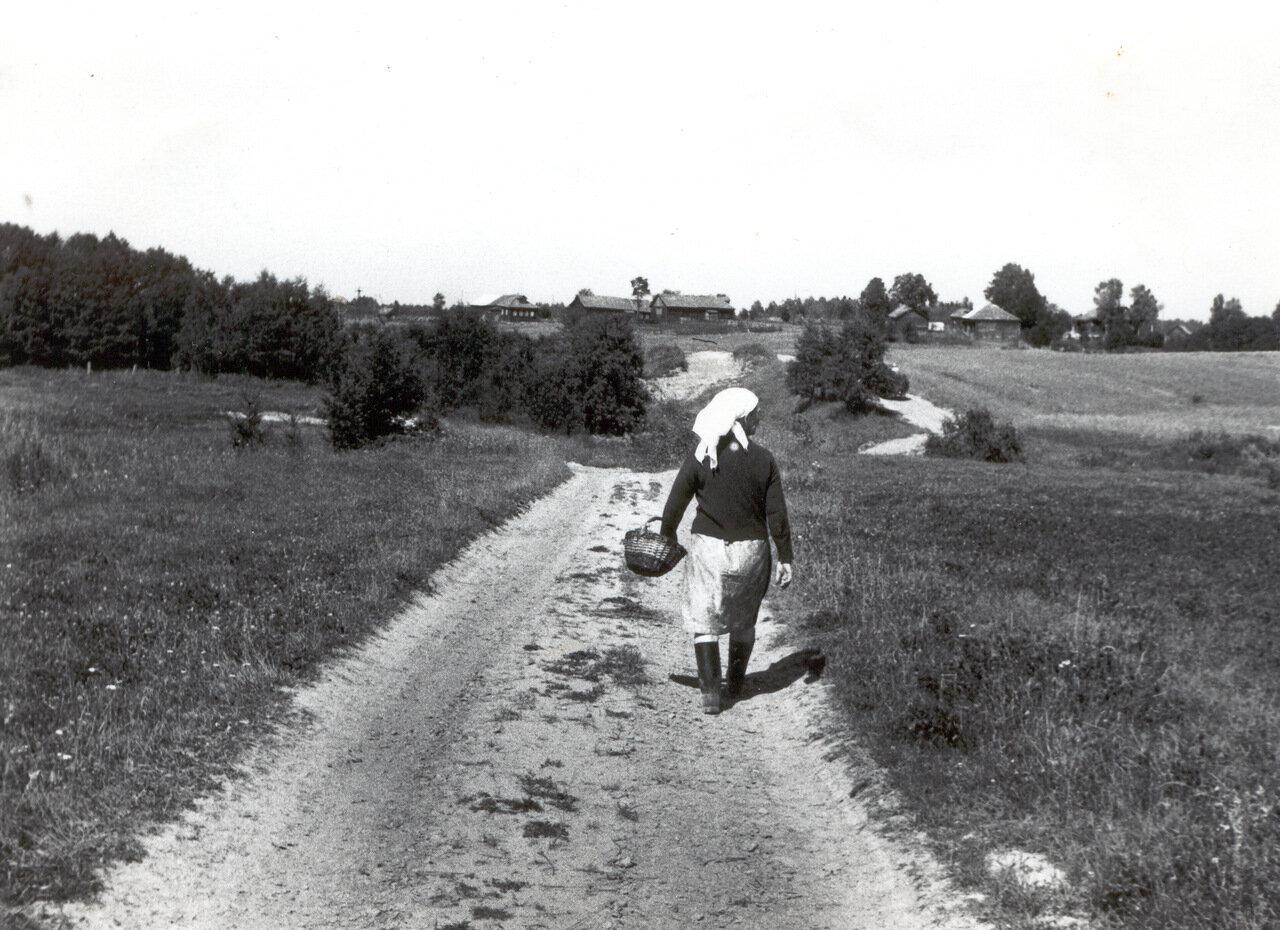 Дорога из Большого Починка в Харламово. Фото 1972 года.