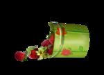 Annevalerie_strawberryswing_el62.png