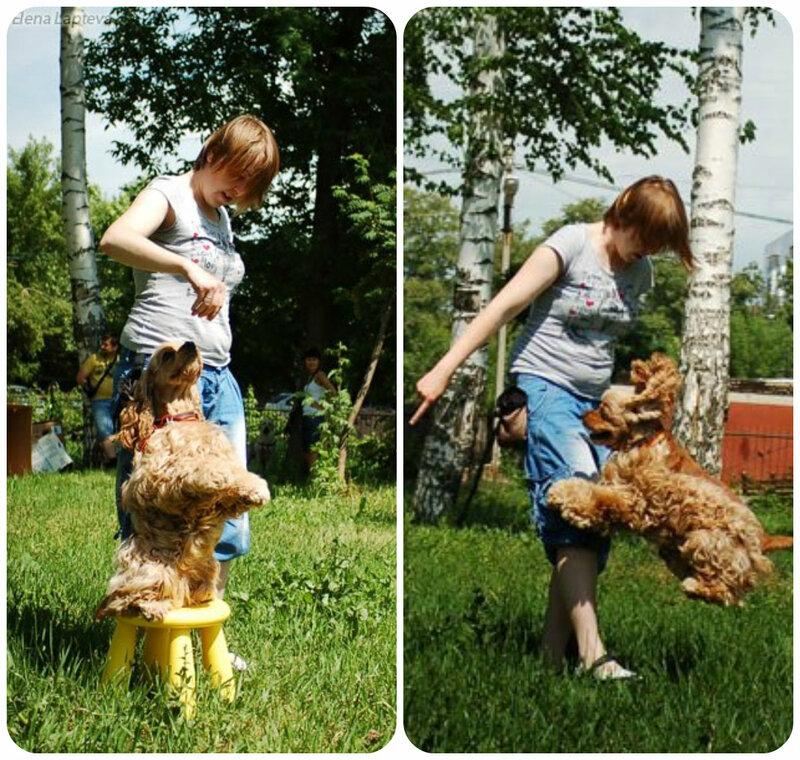 http://img-fotki.yandex.ru/get/9165/6587413.12/0_c3926_99317a21_XL.jpg