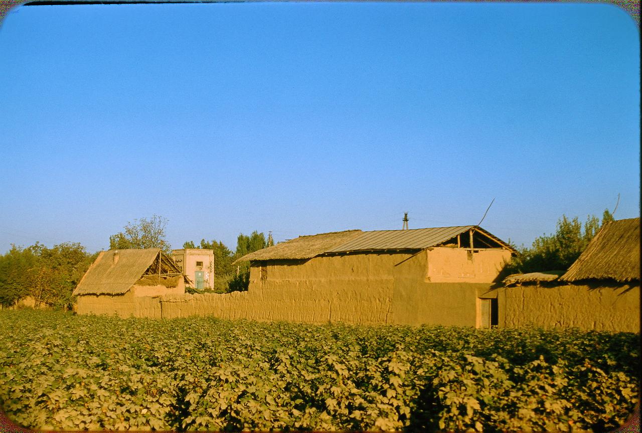 Сельскохозяйственные постройки