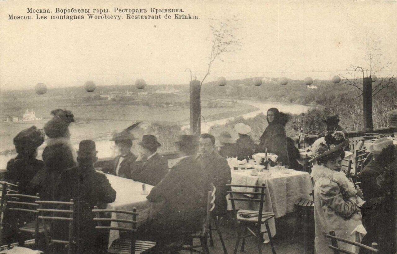 Воробьевы горы. Ресторан Крынкина