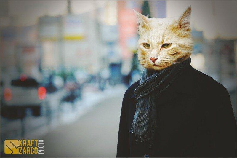 человека с головой кота