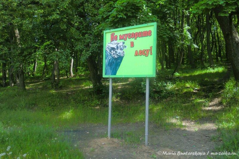 Андреевские пруды, Саратов, 04 июня 2013 года