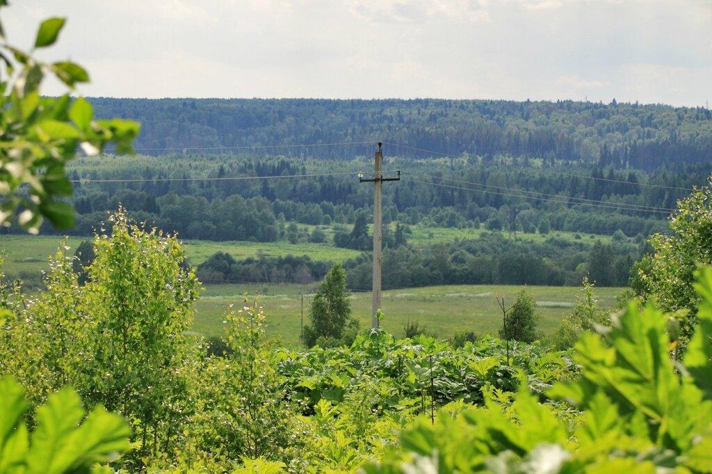 Пейзажи в Подъячеве