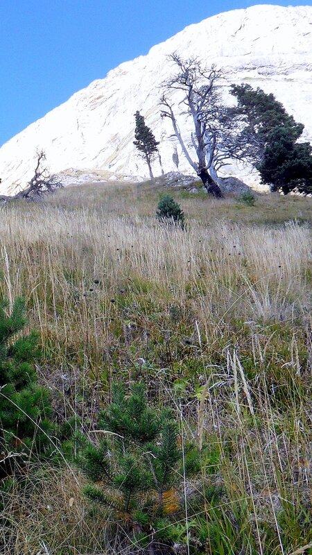Большой Тхач, Кавказ,  сентябрь 2012
