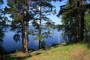 Берег озера Вуокса