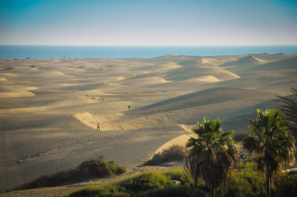 Playa-Ingles-(8).jpg