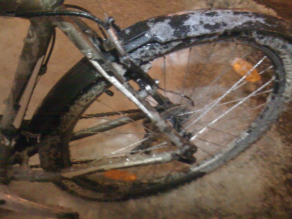 Thomas Stakenborg - bicycle rider