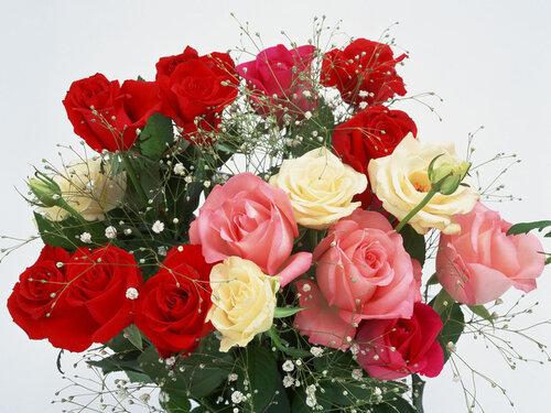Букет роз для любимой открытка поздравление картинка