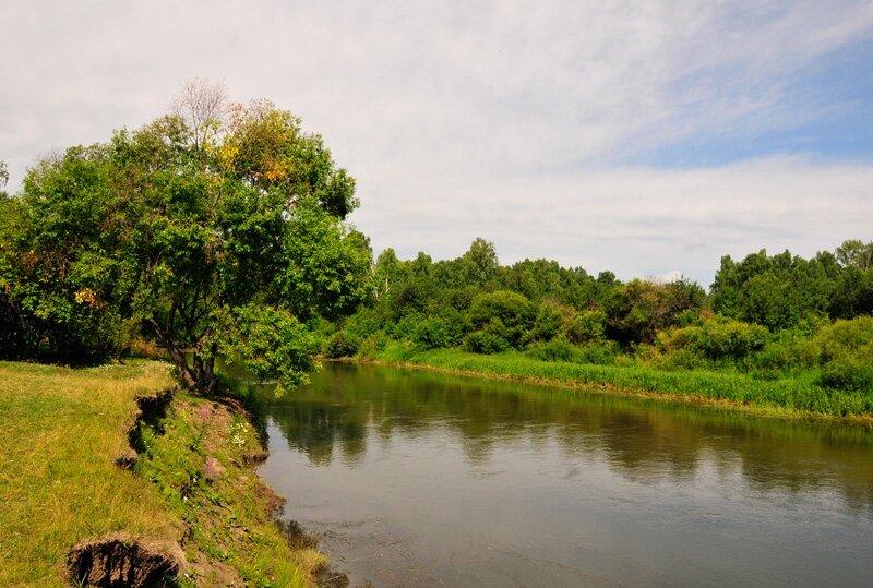 Берег реки Миасс (25.07.2013)