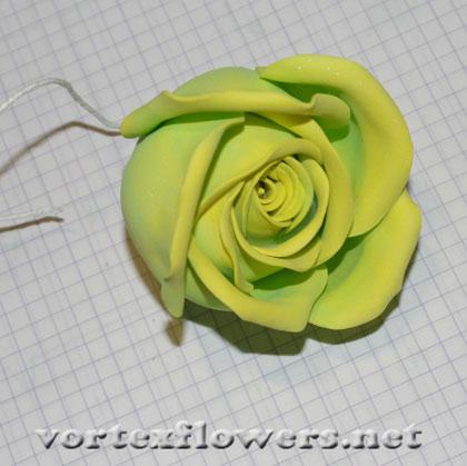 роза из фома