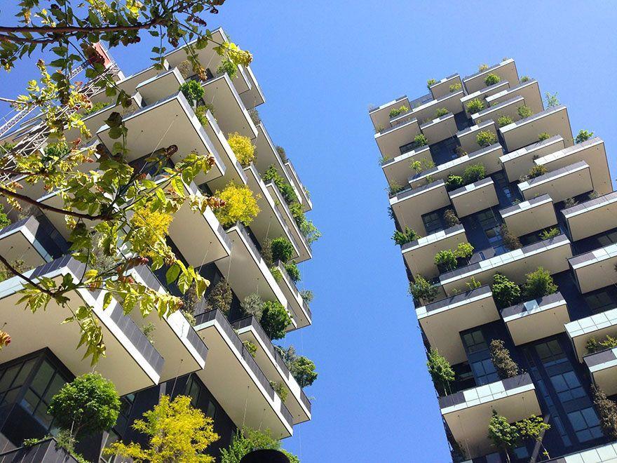 117-метровая башня станет первым в мире зданием, покрытым вечнозелеными деревьями