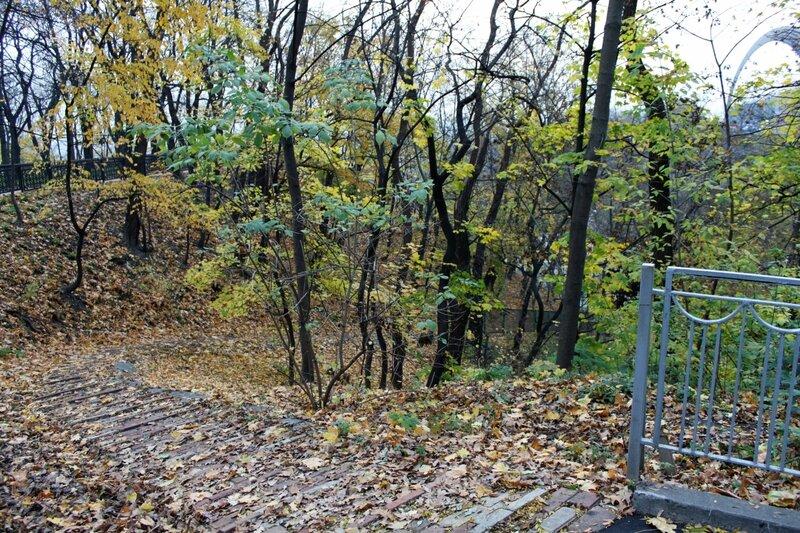Осенняя природа Владимирской горки