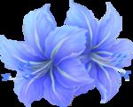 https://img-fotki.yandex.ru/get/9167/42830165.214/0_b145a_6faf30db_S.png