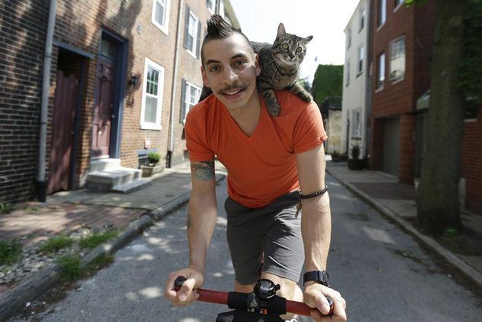 Кот на плече фото 11