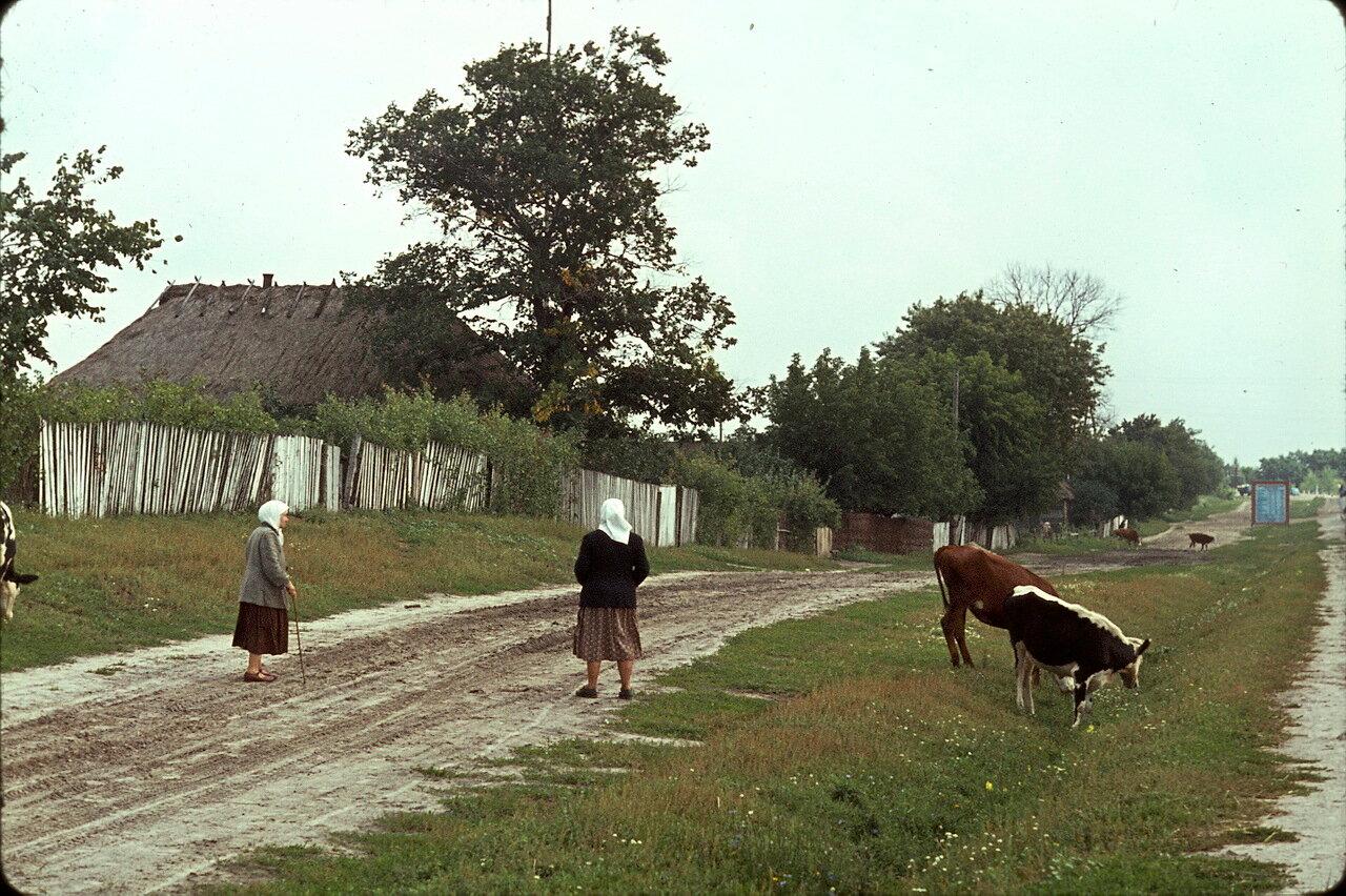 Возвращение в Европу по дороге Киев-Львов