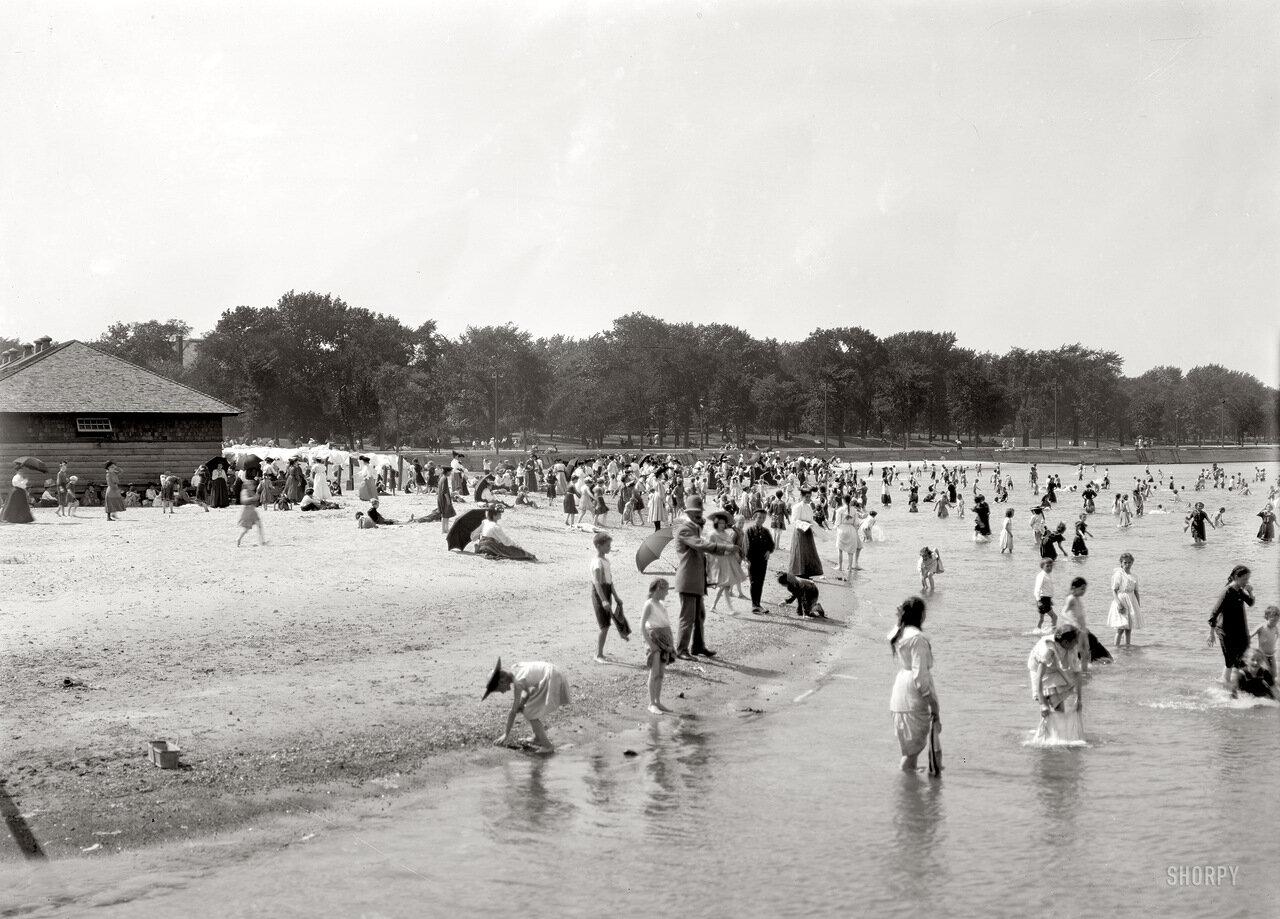 1905. Без подписи