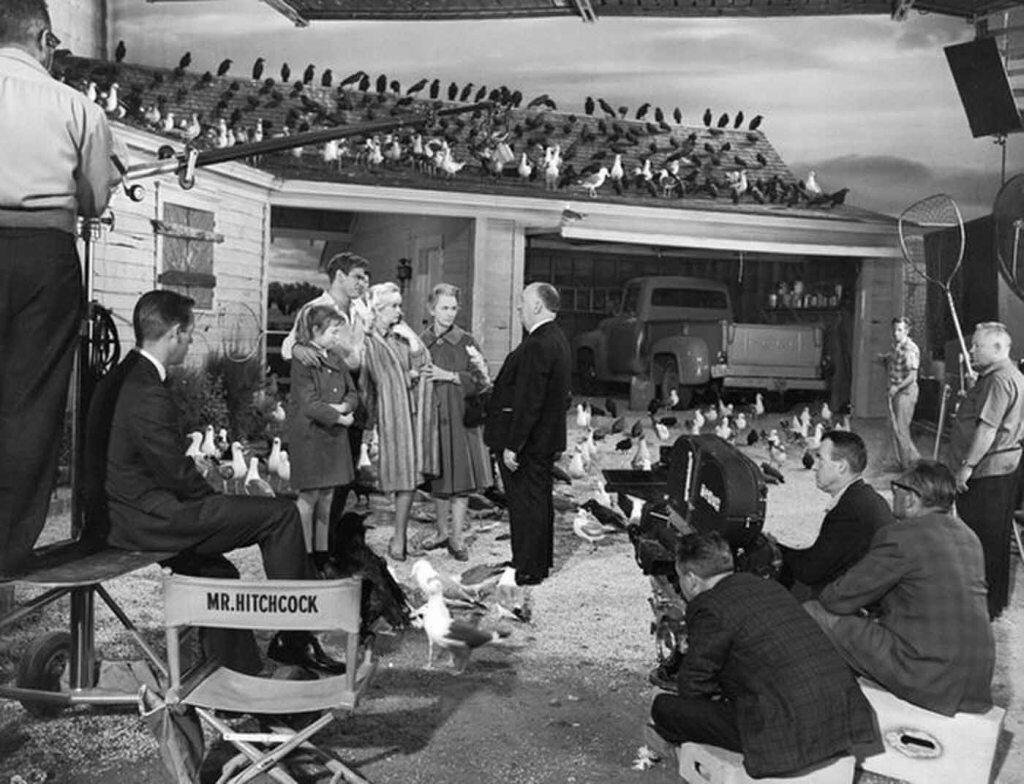 1963. Альфред Хичкок на съемках «Птиц»