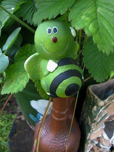 Зеленая гусеничка