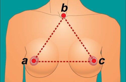 Фото женской груди с выступающими ореолами