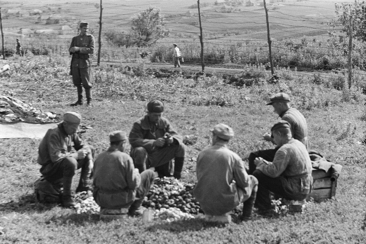 Вишнево. Лагерь для военнопленных