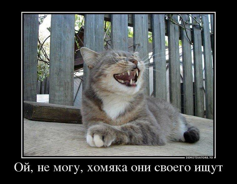 http://img-fotki.yandex.ru/get/9169/13005426.82/0_b7fd5_eee2a83_XL.jpg