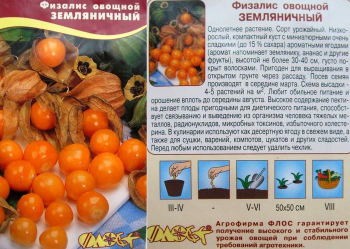 Как сажать физалис семенами 64