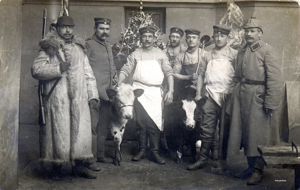 Destined to be Christmas dinner 1915