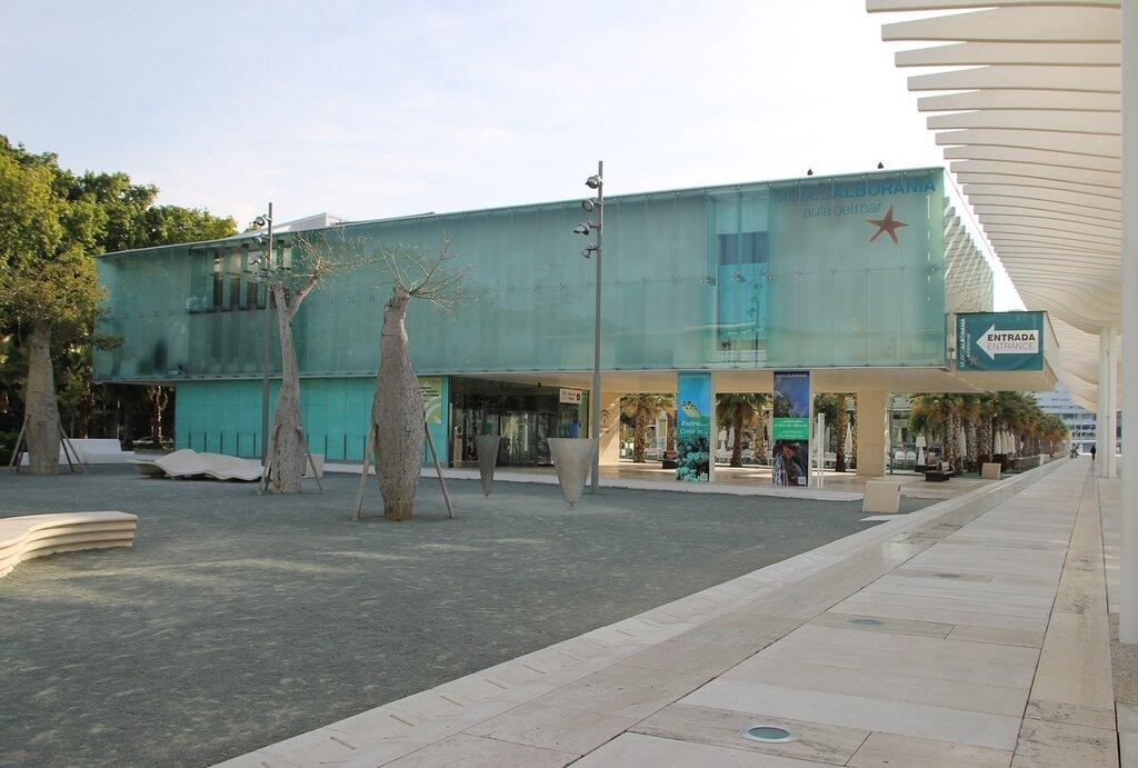 Музей Альбораниа в Малаге (Museo Alborania de Aula del Mar), Морской музей