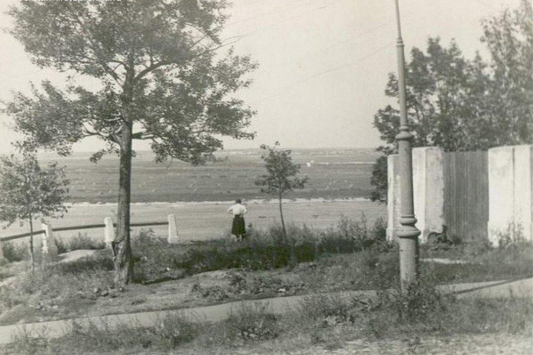 1973. Вид на Оку.