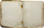 Holliewood_NatureJournal_Journal1.png