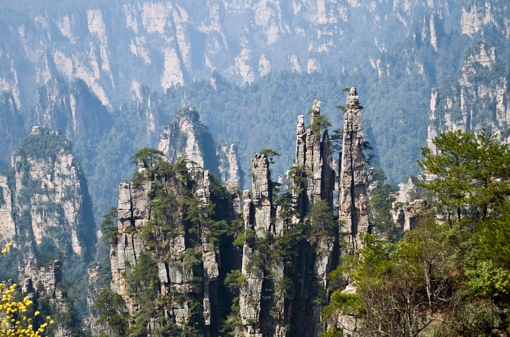Фотография 19. Так долго стремился к этому месту, а так и не смог найти красивый ракурс для фотографирования знаменитых скал Emperor's Brush Pen Peak. Отзыв о поездке в национальный парк Чжанцзяцзе в Китае.
