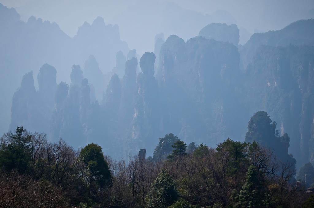 Фотография 20. Вот такие виды открываются с вершины пагоды у смотровой площадки Императорские Кисти в заповеднике Чжанцзяцзе. Рассказ о самостоятельном отдыхе в Китае
