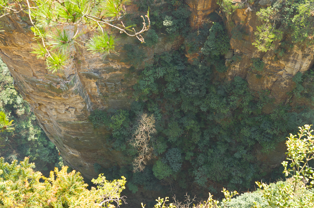 Фото 2. Достопримечательности Китая. Экскурсия в национальный парк Чжанцзяцзе. Высота такая, что голова кружится...