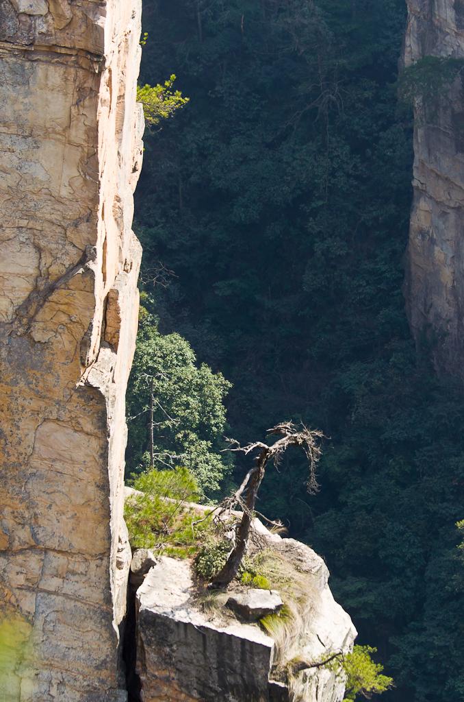 Фотография 11. Отзыв о поездке в парк Чжанцзяцзе. Пример горного пейзажа, снятого зеркальный фотоаппарат Nikon D5100 и на телевик 70-300mm f/4.5-5.6G.