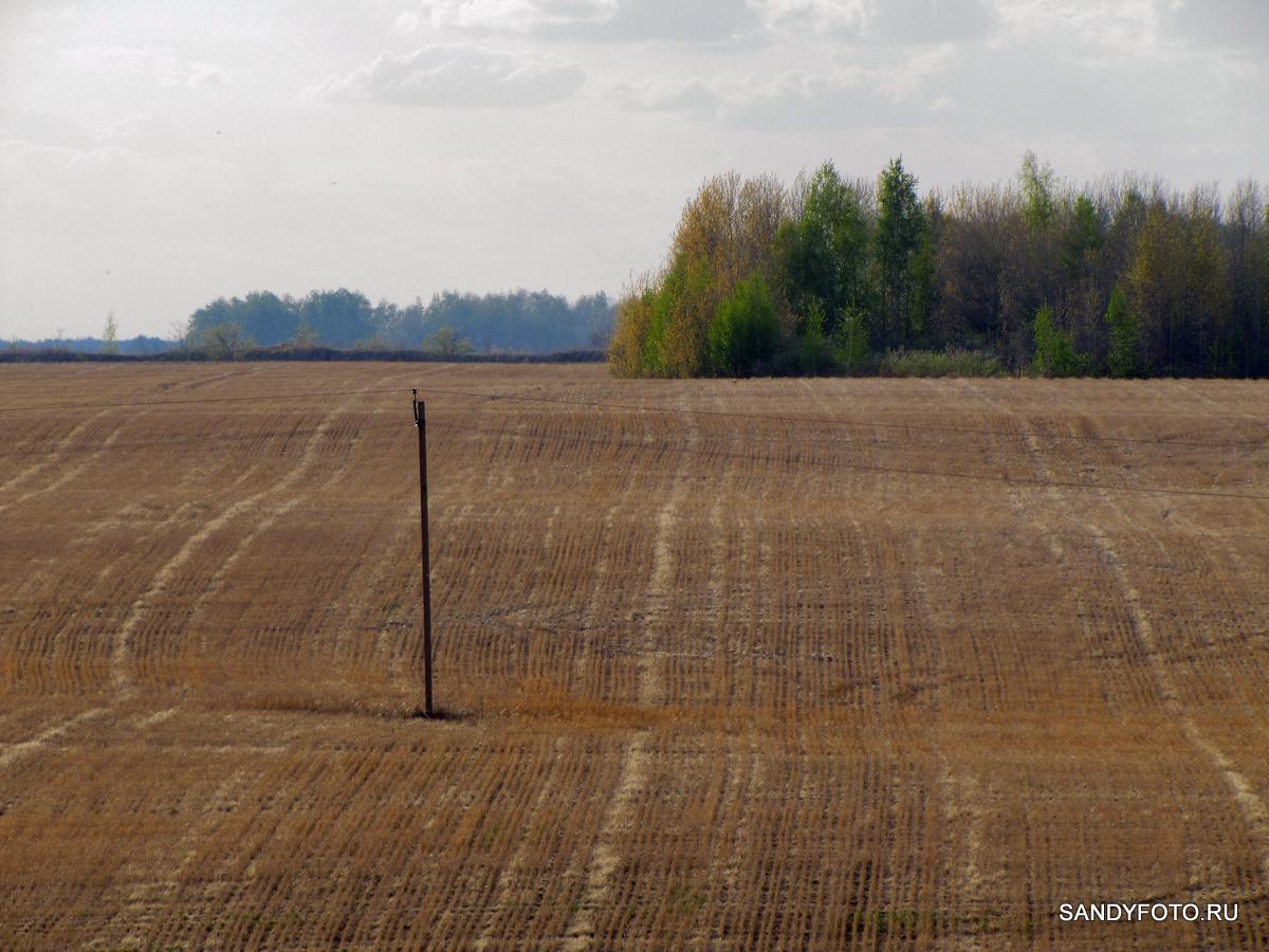 Художественные фотографии с sandyfoto.ru #1