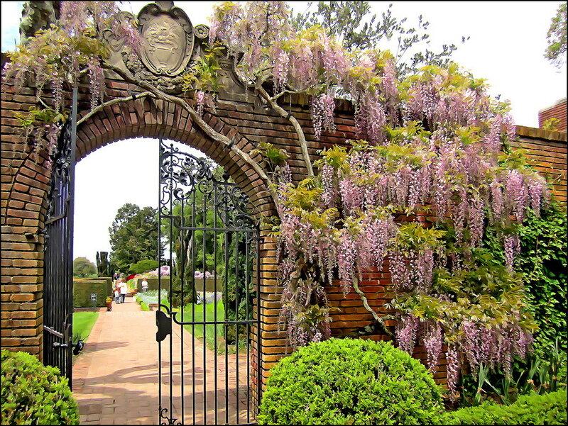Весенний сад / Spring Garden