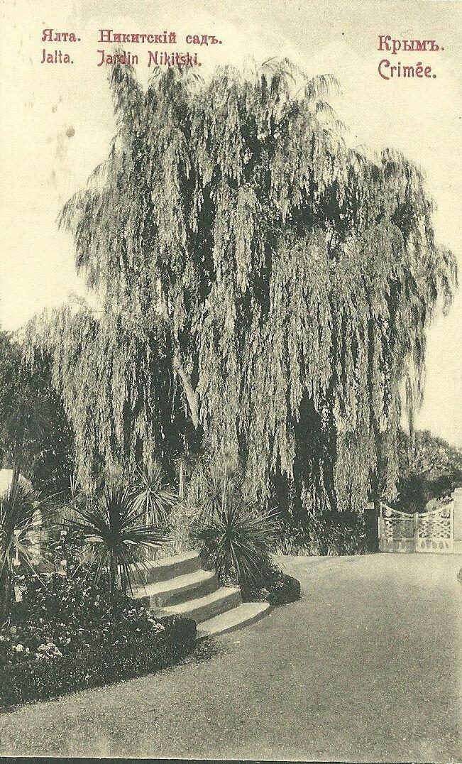 Императорский Никитский сад