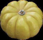 RR_AutumnSplendor_AddOn (21).png