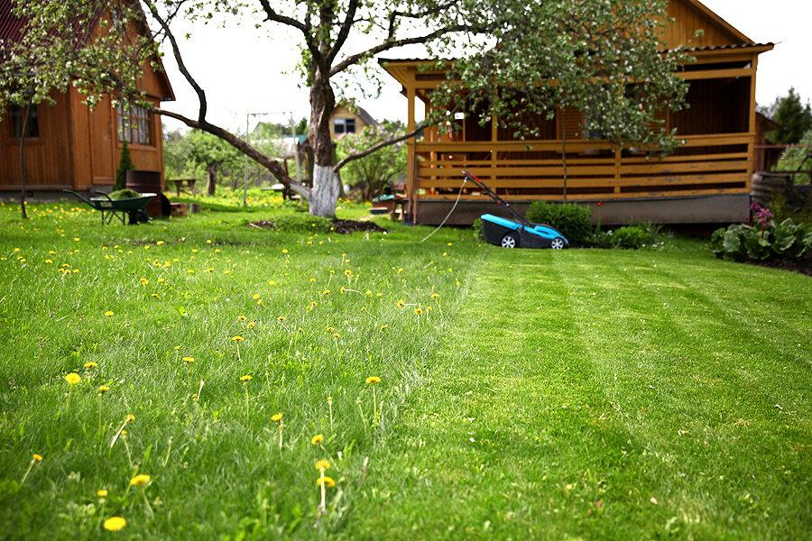 газонокосилка газон