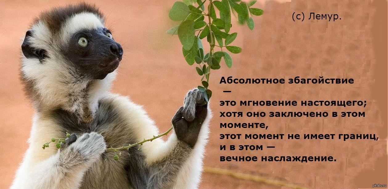 Абсолютное збагойствие - это мгновение настоящего; хотя оно заключено в этом моменте, этот момент не имеет границ, и в этом - вечное наслаждение (с)Лемур
