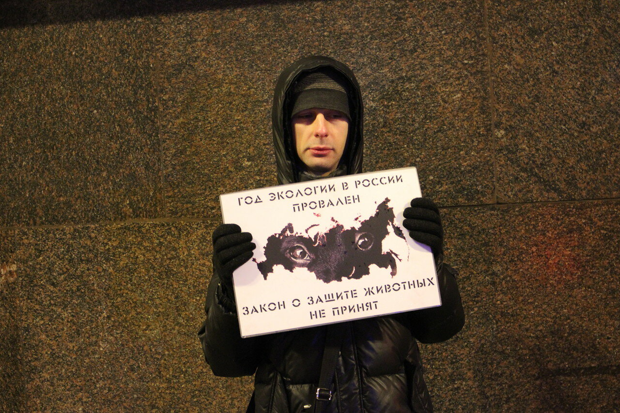 Голодовка зоозащитников возле Госдумы: 9-й день