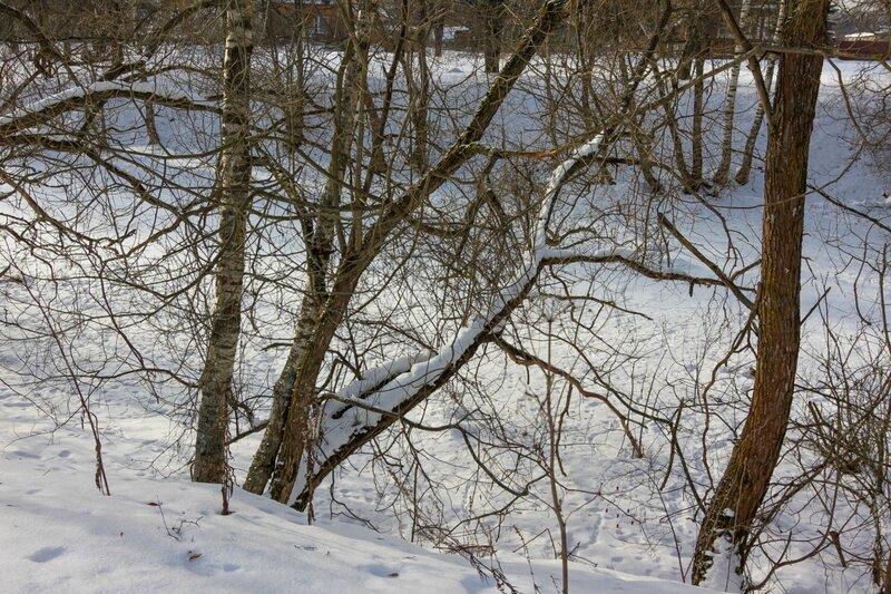 Берега сельского пруда, Ольгово